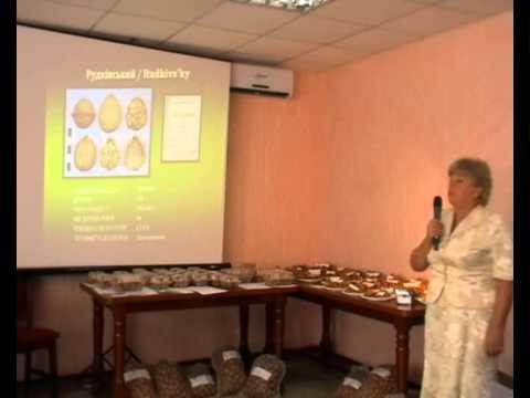 Украинские сорта ореха грецкого