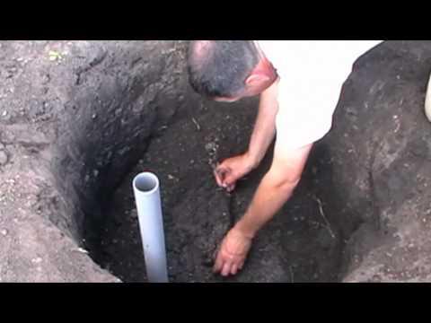 Проверенный способ посадки винограда