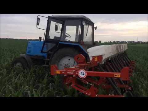 13 июня подкормка кукурузы