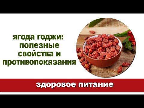 Вся правда о ягодах годжи / Полезные свойства и противопоказания
