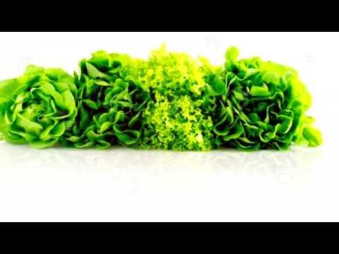 САЛАТ ЗЕЛЕНЫЙ - ПОЛЬЗА И ВРЕД / полезные свойства салата, листья салата виды,