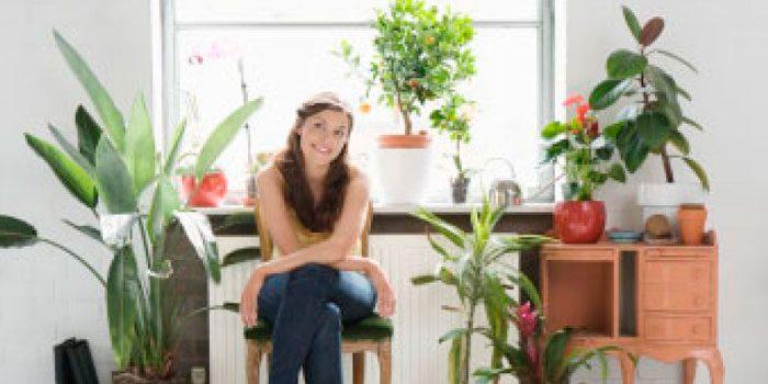 уход комнатными растениями