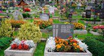 Цветы для кладбища