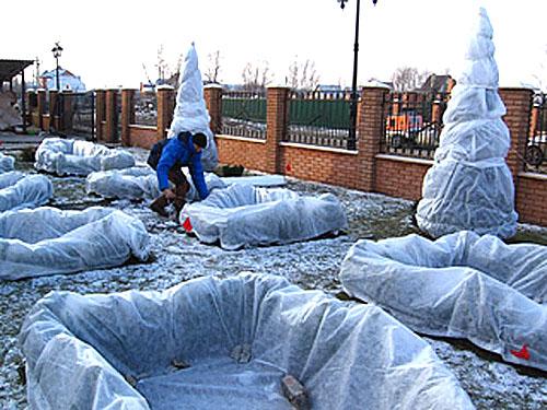 Подготовка к зимовке