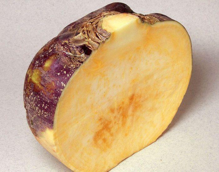 Лучшие желтомясые сорта