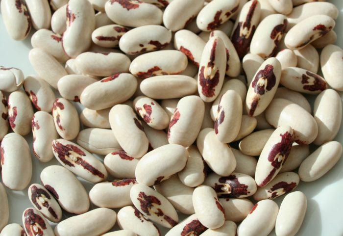зерновая фасоль