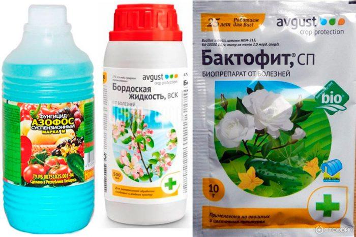 Препараты от ржавчины (фунгициды)