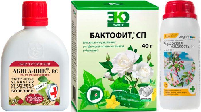 Препараты от черной пятнистости (фунгициды)