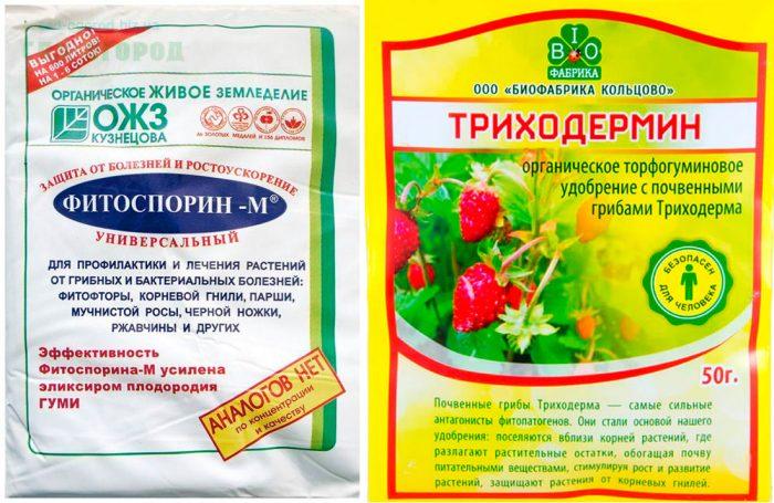 Препараты от фитофторы