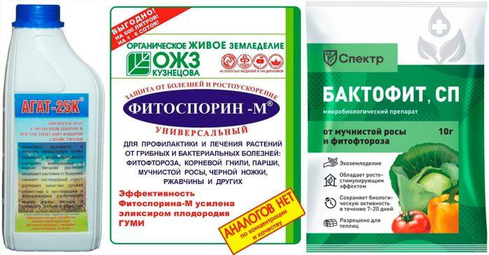 Препараты от фузариоза (фунгициды)