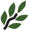 site logo:лавр