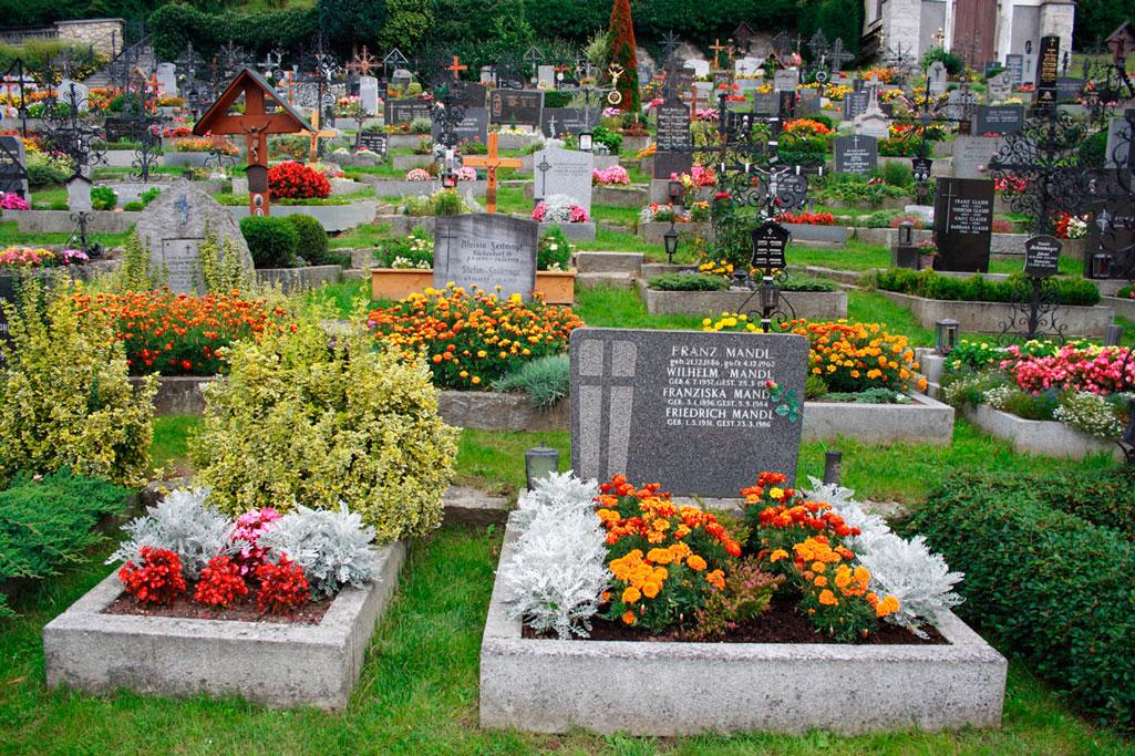 Живые цветы на кладбище
